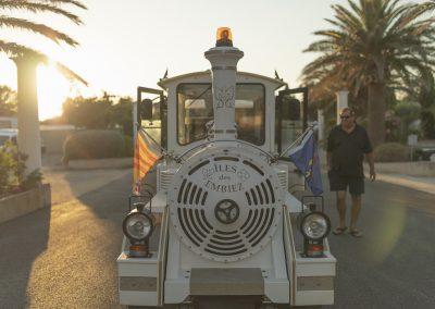 Dreamy Train